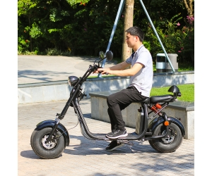 2 wheel aluminium alloy 18 inch fat tire electric scooter city coco with EEC approval