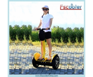 2014 Latest Electric Balance Scooter,Electric Chariot,Self-Balancing Scooter Model ESIII