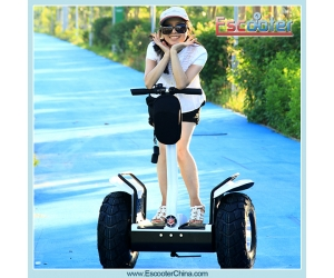 2015 New Fashion Personal Transporter Segway Style Scooter X2