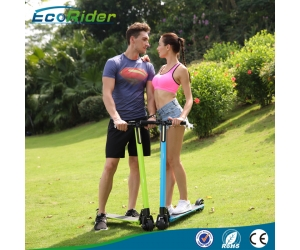 2017 Folding Brushless 350w Samsung lithium 24v kick electric scooter