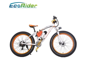 2018 New Design Fat tire Electirc Bike 48v 350w snow electric bicycle
