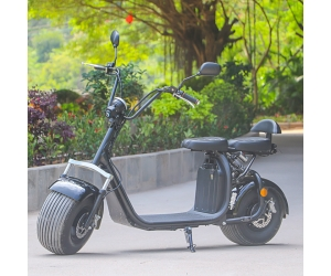 2018 Removable battery 60v 12/20ah citycoco scooter 2 wheels with Front and rear shock absorber EEC approved Ecorider
