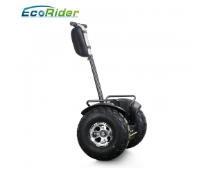 2018 fashion 19 inch fat tire two wheel electric chariot,golf electric scooters