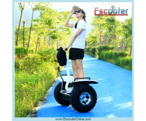 Adult Electric Scooters,Standing Scooter 2 Wheel ESOI
