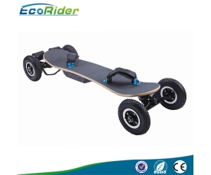 Adult off Road Electric Skateboard 4 Wheel Brushless Motor Electric Longboard with Samsung or LG Battery