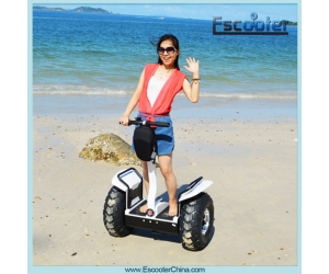 All Terrain Electric Chariot,Self Balance 2 Wheel Electric Scooter Off-road Stand up Scooter
