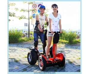 CE, FCC, RoHS goedgekeurd Self Balancing Scooter Straat Model Personal Transporter ESIII