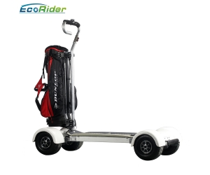 CE certificate exciting electric golf skateboard, battery longboard EcoRider 60V Off Road Electric Skateboard for adults