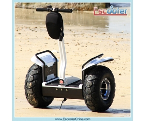 China Hot Sale Electric Chariot,Balancing Scooter ,Cheap Electric Scooter