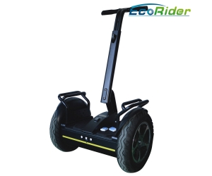 ESIII-L1 & ESIII-L2 City Road/Street Style Self Balancing Scooter