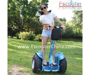 ESOII 2015 Newest 4000W Motor Two Wheels Self Balancing Electric Chariot Personal Transporter.on Escooterchina.com