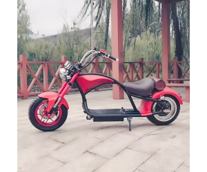 EcoRider 2019 New Design 2 Wheels Electric Scooter Adult Harley Scooter Citycoco Scooter with Removable Battery
