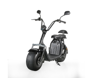Ecorider Citycoco Fat Tire Electric Scooter Two Wheel
