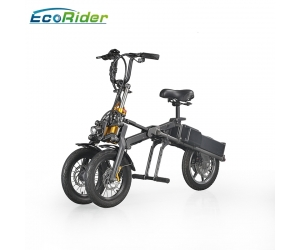 EcoRider Professional Wholesale 48v Lithium Battery 14 Inch Tyre Electric Bike Made In China