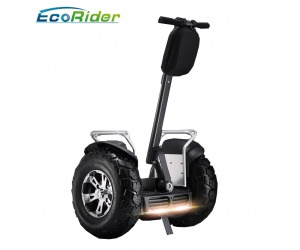 EcoRider Two Wheels Stand UP Electric Scooter Self Balancing Segway Chariot with two Samsung lithium 84v, 1266wh Battery