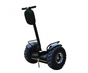 EcoRider Typical China Segway Two Wheels Self Balancing Scooter ESOI (L2)