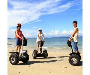 Electric Chariot x2 for Sale,Lithium Battery Electrical Self