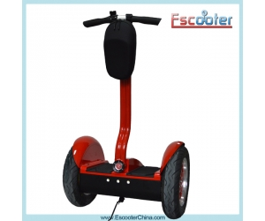 Fashion,Green,Convenient Adult Stand Up Scooter,E-balance Scooter,Electric Bike ESIII