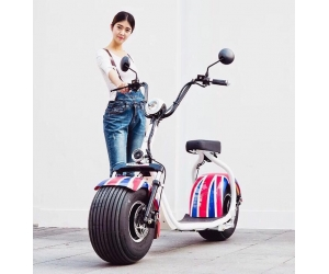 Harley Electric scooter 2017 original Factory certification CEE citycoco