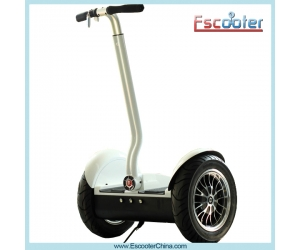 Hot Electric Balance Scooter,Electric Chariot,Self-Balancing Scooter Model ESIII