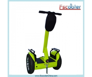 Hot Sell China Chic Smart Dual Wheel Self Balancing Scooter ESIII L2