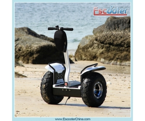 Powerful and Long Range motorized scooters,electric mobility scooter, electric scooter for adults