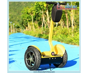 Segway Self-Balancing Electric Chariot Personal Transporter Scooter (ESIII)
