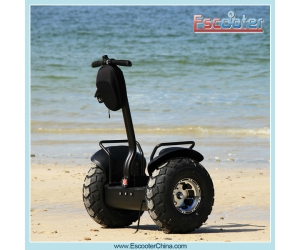 2 Wheel Self Balancing Scooter, Banlance Scooter 2000W with Lead Acid Battery ,Xinli Escooter ESOI