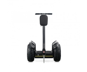 Auto-équilibrage scooter électrique 19inch segway scooter Marque chinoise célèbre scooter fabrication EcoRider