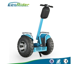 Two-Wheel self balancing scooter 4000W powerful Motocross Segway Scooter With Double Battery