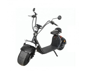 two-wheeled 1500w Electric Scooter 70 km RangeCard Charge Citycoco certified EEC