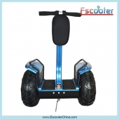China 2014 Fashionable electric chariot x2 with CE /FC /ROHS approved-Fabrik