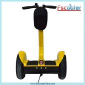 Κίνα εργοστάσιο 2014 Hot Product Street Model 2 Wheel Stand Up Scooter ,Mobility Scooter for Adults and Kids ESIII