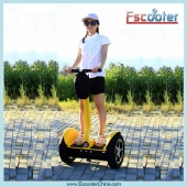 China 2014 Latest Electric Balance Scooter,Electric Chariot,Self-Balancing Scooter Model ESIII factory
