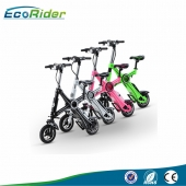China 2016 Newest Folding Electric Bike 36V 250W Brushless Motor factory