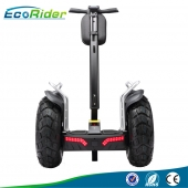 China EcoRider Double Battery 4000w Two Wheels Electric Chariot Scooters factory