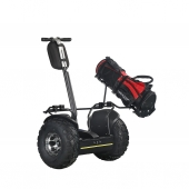 China 2018 Hot Sale Segway Scooter 2 Wheel Off Road Golf Cart Electric Self Balancing Scooter with 19 inch Kenda Tire factory