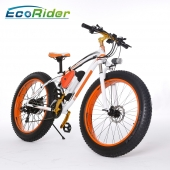 China 2018 New Design Fat tire Electirc Snowmobile 48v 350w electric bicycle factory