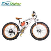 China 2018 novo design Fat pneu electirc moto 48V 350W neve Electric Bike fábrica