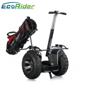China 2018 New Product Electric Golf Cart , China Segway Golf Scooter, Smart Balance Golf Car for Sale factory
