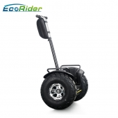 China 2018 fashion 19 inch fat tire two wheel electric chariot,golf electric scooters factory