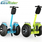 China 21inch Big Wheels E8 -2 Brushless Off Road Segway Electric Scooter with Double Battery-Fabrik