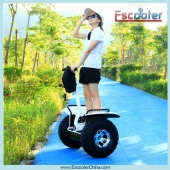 China Adult Electric Scooters,Standing Scooter 2 Wheel ESOI-Fabrik