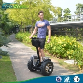 China App Controlled Chariot Electric Scooter 4000 Watt With Samsung Lithium Batteries factory