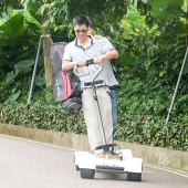 China Best verkopende elektrische golfskateboard, golfplaat, EcoRider Golf Skate Caddy, golfscooter fabriek