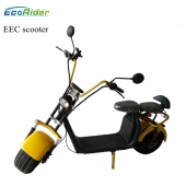 China EEC and COC certificate removable double battery e-scooter city coco 2 Wheels adult electric city scooter factory