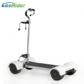 China EcoRider 10,5 inch Big Size Wheel Golfkar Mobiliteit Scooter, Elektrische Golf Scooter voor 18 holes fabriek