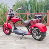 China EcoRider Harley Scooter Electric Scooter for Adult, Powerful Motorcycles Citycoco Electric Scooter with 3000w Brushless Motor factory
