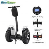 China EcoRider E8 4000W Imported New Model CE/Rohs/FCC Approved China Segway Two Wheel Self Balancing Electric Chariot Scooter factory