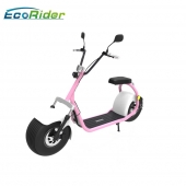 China EcoRider EEC Certificate 18 inch fat tire citycoco model LT019 with double seat and mirrors, two wheel electric scooter for sale factory